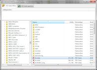 PDF Passwort Knacker